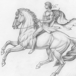 Rider. 2004. Graphite pencil on paper. 21x29,7 ( 8 1/4 x 11 7/8 in) // Вершник. 2004. Папір,олівець. 21x29,7